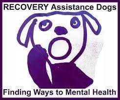 Recovery Assistance Dogs fundraising